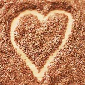 heart-flax