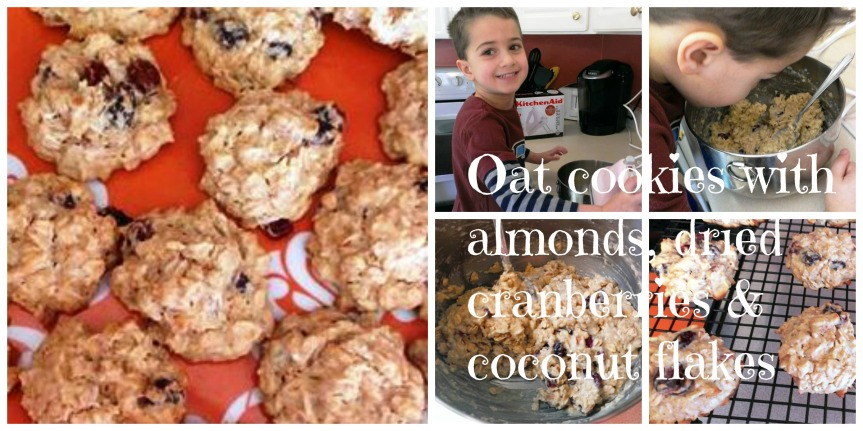 oat cookies collage