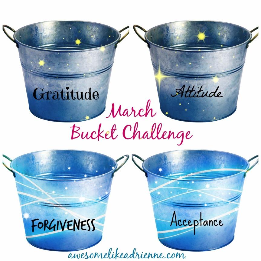 bucket challenge march 2015